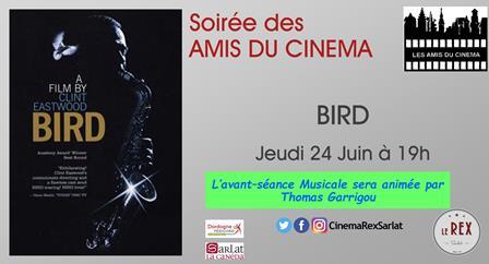 Soirée Amis du Cinéma: BIRD // Jeudi 24 Juin à 19h