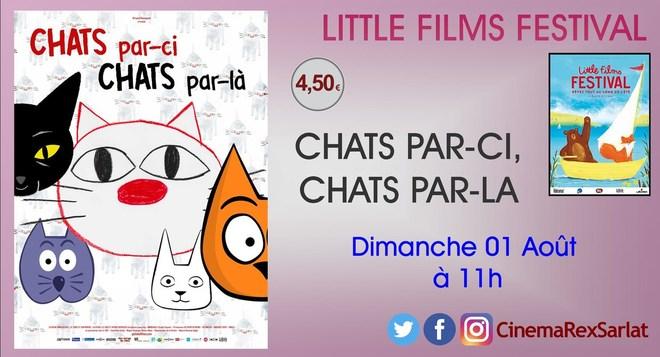 Little films Festival: CHATS PAR CI, CHATS PAR LA // Dimanche 01 Août à 11h